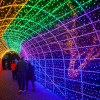 Tunnel-of-Lights-1